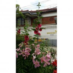 Albergues - Albergue Birdsnest  Hongdae